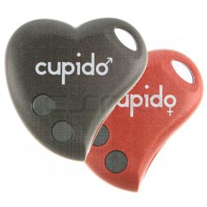 Handsender BENINCA CUPIDO-2 Programmierung dem Empfänger