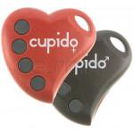 Handsender BENINCA CUPIDO-4 Programmierung dem Empfänger
