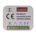 Empfänger DS001 RX MULTI